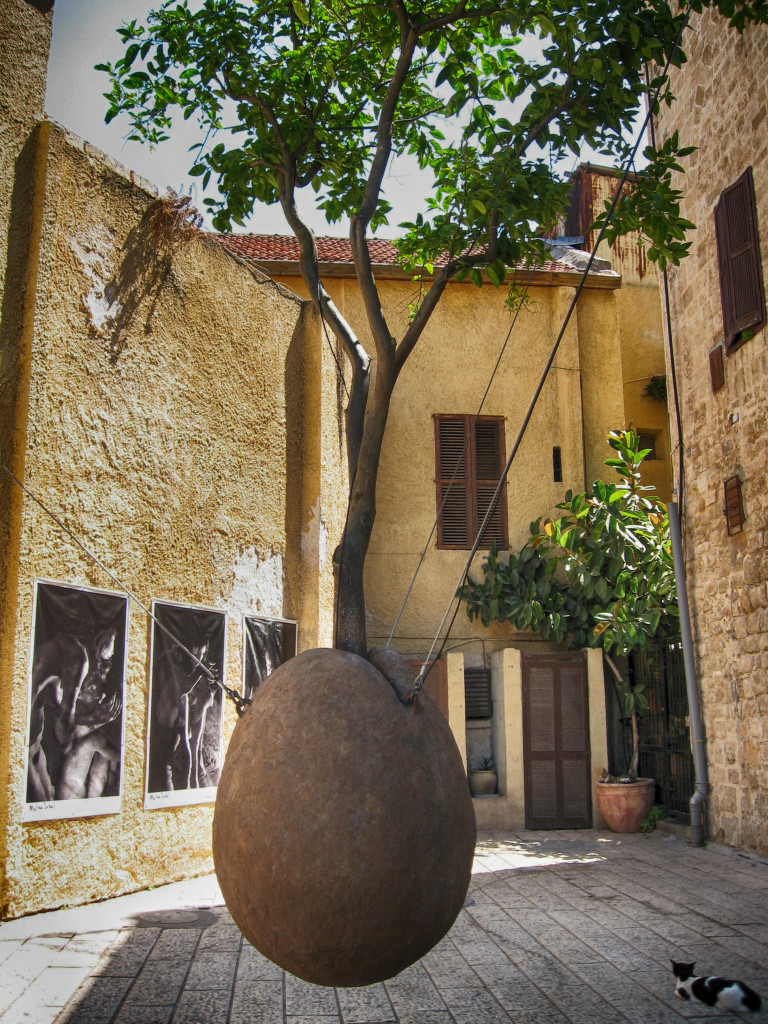 The suspendend tree - old Jaffa